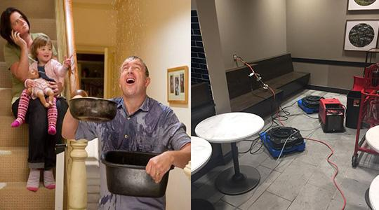 Features That Can Impact the Hiring of Water Damage Companies