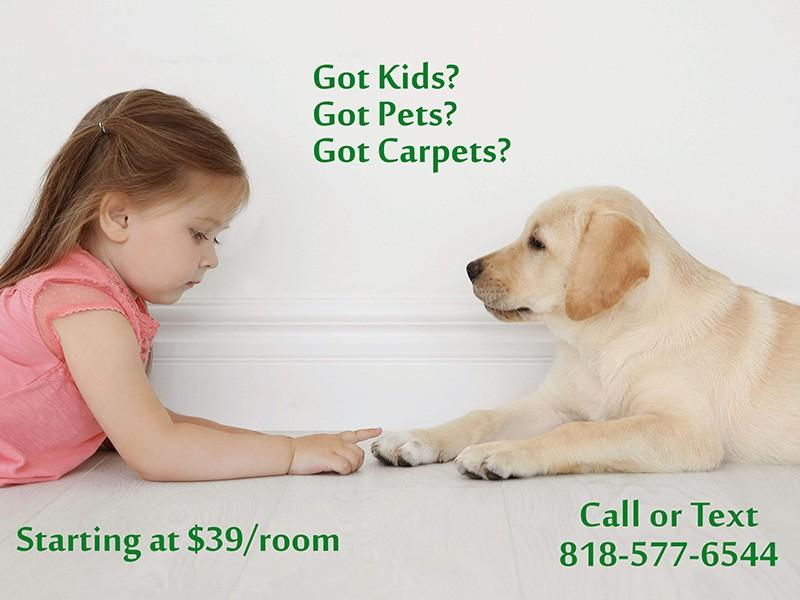 Breathe New Life In Your Carpets And Increase Its Value!