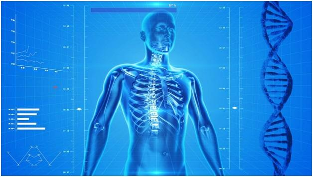 Chiropractic Care: The Path to Maintaining Healthy Lifestyles