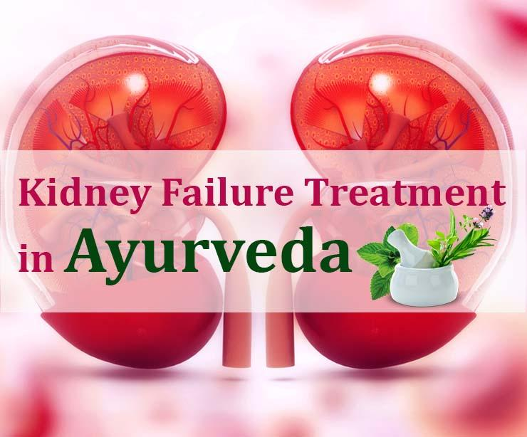 Guide to Kidney Failure and Ayurvedic Methods for the Treatment