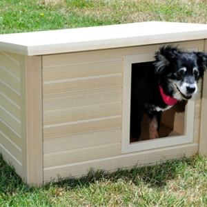 Things to Consider Before Buying a Pet Home