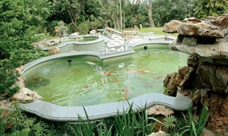 Things to consider building a pond for fishes
