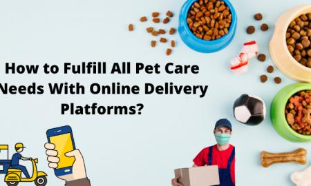 How to Fulfill All Pet Care Needs With Online Delivery Platforms?