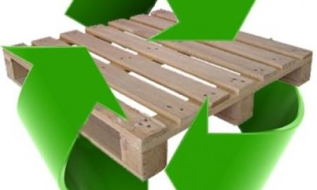 Green Businesses and Paper Pallets